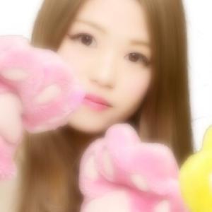 ぬこちゃんのプロフィール画像