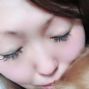 アリスちゃんのプロフィール画像